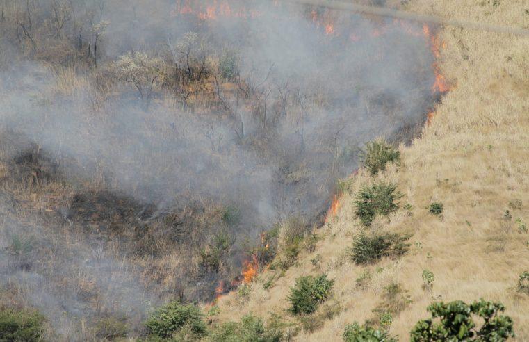 Incêndio de grande proporção atinge parque nacional no Rio