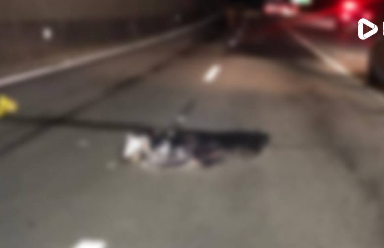 Motociclista morre em grave acidente na PR 407