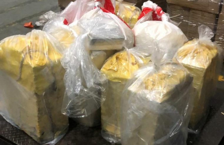 Polícia Federal apreende 333 quilos de cocaína no Terminal de Contêineres de Paranaguá